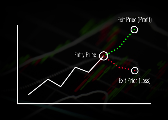 Stock Market Entries and Exits