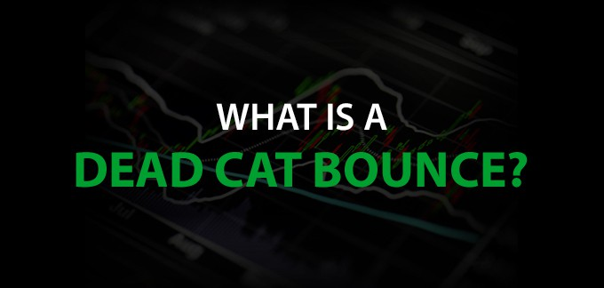 What is a Dead Cat Bounce?