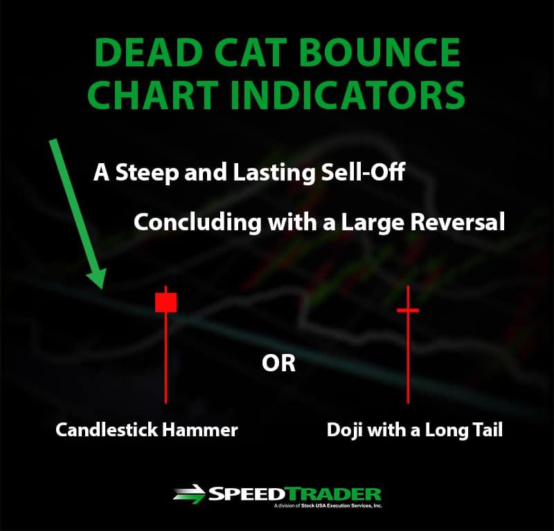 Dead Cat Bounce Indicators