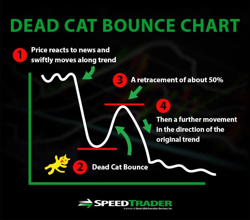 Dead Cat Bounce Chart